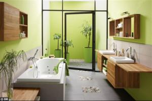 photo salle de bain nature