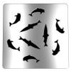 grille-de-siphon-pour-douche-dauphin